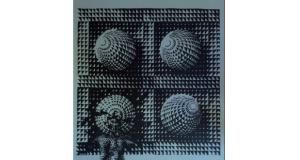 Grafike: Dragan Čubrić, izložba
